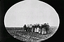 Doukhobor women pulling a plough on the Thunder Hill Colony, Manitoba, ca. 1899