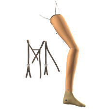 Artist's rendition of James Hall and Terence Sparham's 1894 ARTIFICIAL LEG, showing leg and harness