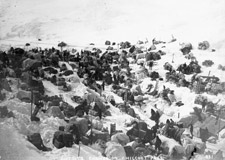 Photograph of a large cache of prospectors' supplies and packs stored in the mountains at Chilkoot Pass, 1898