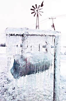 Photograph of a rural mailbox, completely encased in ice, near Farnham, Quebec, January 1998