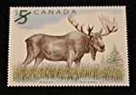 Postage stamp of moose