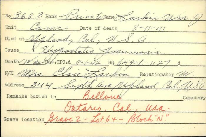 Title: Veterans Death Cards: First World War - Mikan Number: 46114 - Microform: larkin_william-j