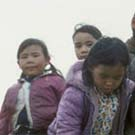 Photograph of a group of eight Inuit girls and boys standing in a field of wildflowers, Pangnirtung(Pangnirtuuq), Nunavut, circa 1975