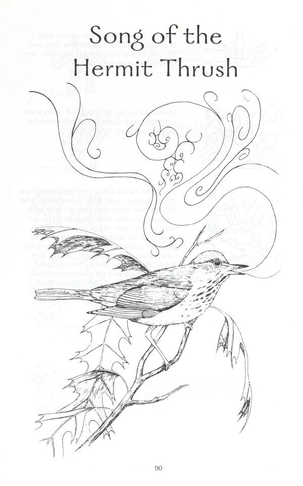 Page blanche imprimée en noir et ornée d'une image noire et blanche