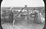 Photograph of three Doukhobor women winnowing grain in the Saskatchewan district, 1899