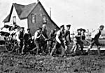 Photograph of about a dozen men hauling, by cart, bags of flour weighing one ton