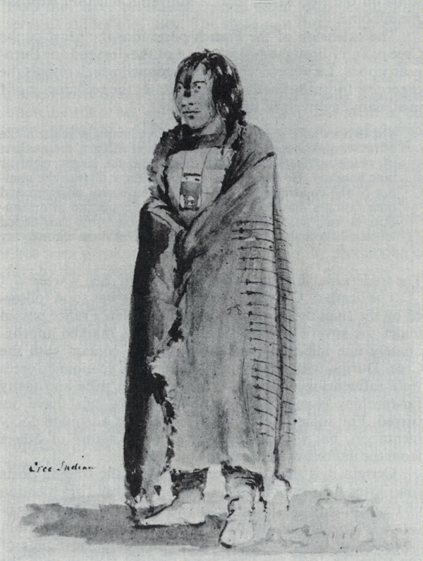 an introduction to the cree indians and their life style Introduction according to indian and northern affairs canada, first nations  peoples  undergone profound dietary and lifestyle transformations in less than  50 years,  diabetic oji-cree in sandy lake are carriers of this variant allele,  which.