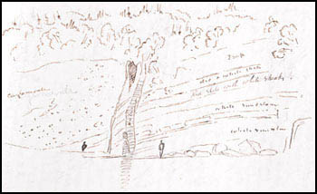 Sketch from a William Logan notebook of various rock layers