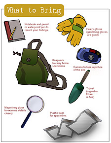 Diagram of what to bring, showing a notebook and pencil or waterproof pen to record your findings; heavy gloves (gardening gloves are good); a knapsack to carry home specimens; a camera to take a picture of the site; a trowel (a garden trowel is fine); a magnifying glass to examine details closely; and plastic bags for specimens