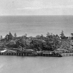 Black and white photograph of buildings on a wooded island