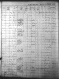General Registers of Chinese Immigration. Library and Archives Canada, RG 76 D2a, vol. 700, reel C-9512