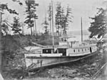 Photograph: At Esquimalt, B.C., a steamer -- no longer needed after the end of the gold rush.