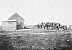 Photo : Ferme de monsieur J. Powell, Kenaston (Saskatchewan), 1907.