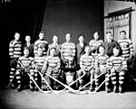 Team photograph, Canadian National Railways hockey team, 1929