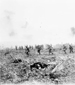 Photograph of the 29th Infantry Batallion under heavy fire, advancing over No Man's Land through German barbed-wire, Vimy Ridge, April 1917