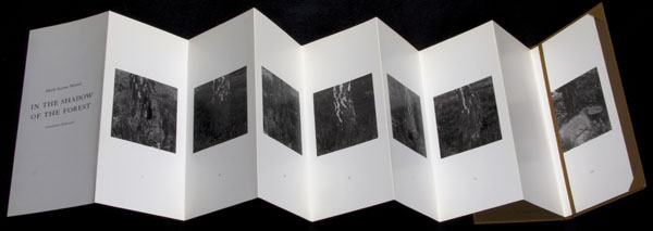 Unfolded accordion book lying flat. Nine white pages showing black printed title panel, seven panels with centered square black and white photographs of a tree trunk.