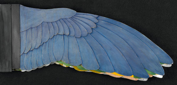 Book cover resembling a large bird wing with blue feathers.