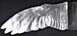 Book cover resembling a large bird wing with white feathers.
