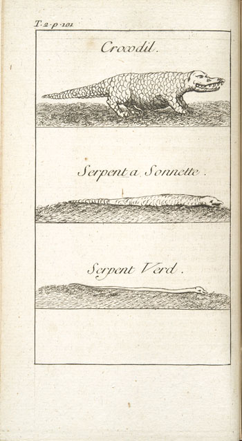 Engraving from book, HISTOIRE DE LA LOUISIANE [. . .]