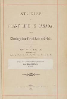 Title page of book, STUDIES OF PLANT LIFE IN CANADA, OR, GLEANINGS FROM FOREST, LAKE AND PLAIN, by Catharine Parr Traill. First edition, Ottawa: A.S. Woodburn, 1885