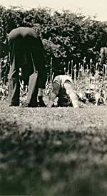 Photograph of Glenn Gould and his grandfather, both bent over, trying to perform a handstand