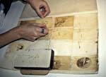 Photograph of a conservator reattaching albumen prints into a counter book