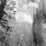 Photograph of Albert Canyon, British Columbia, 1886