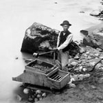 Photograph of a Chinese man washing gold using a small sluice box, Fraser River, British Columbia, circa 1875